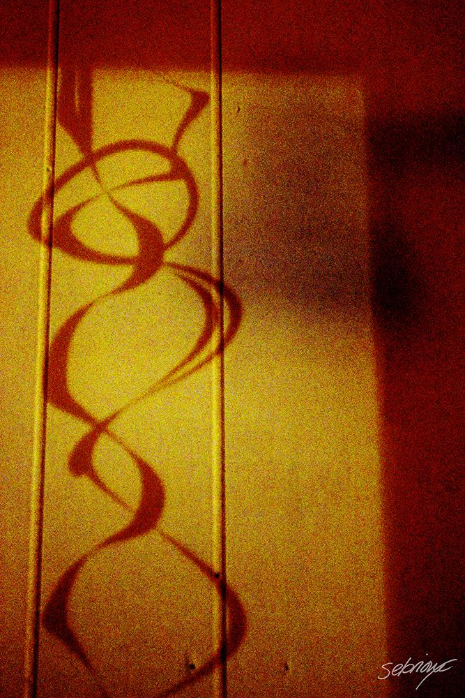 untitled-1_signed_web